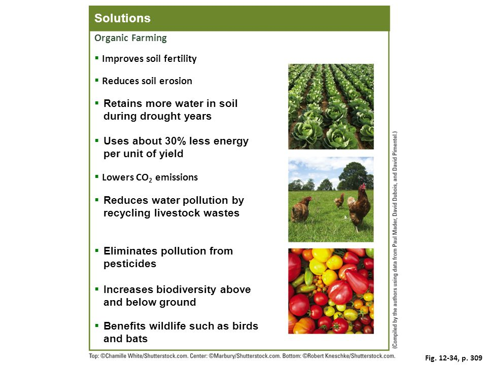 Solutions Organic Farming Improves soil fertility Reduces soil erosion