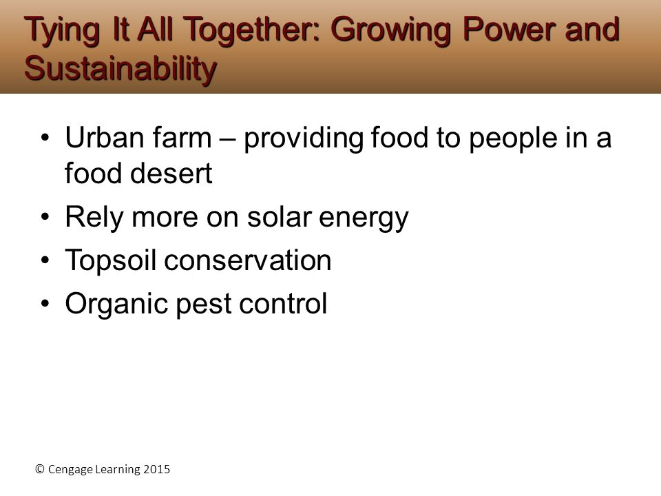 Tying It All Together: Growing Power and Sustainability