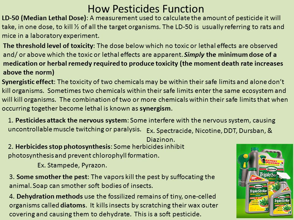How Pesticides Function