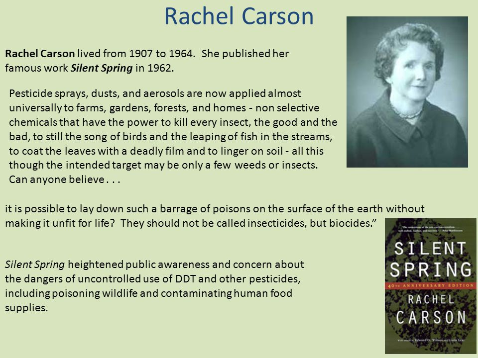Rachel Carson Rachel Carson lived from 1907 to 1964. She published her famous work Silent Spring in 1962.