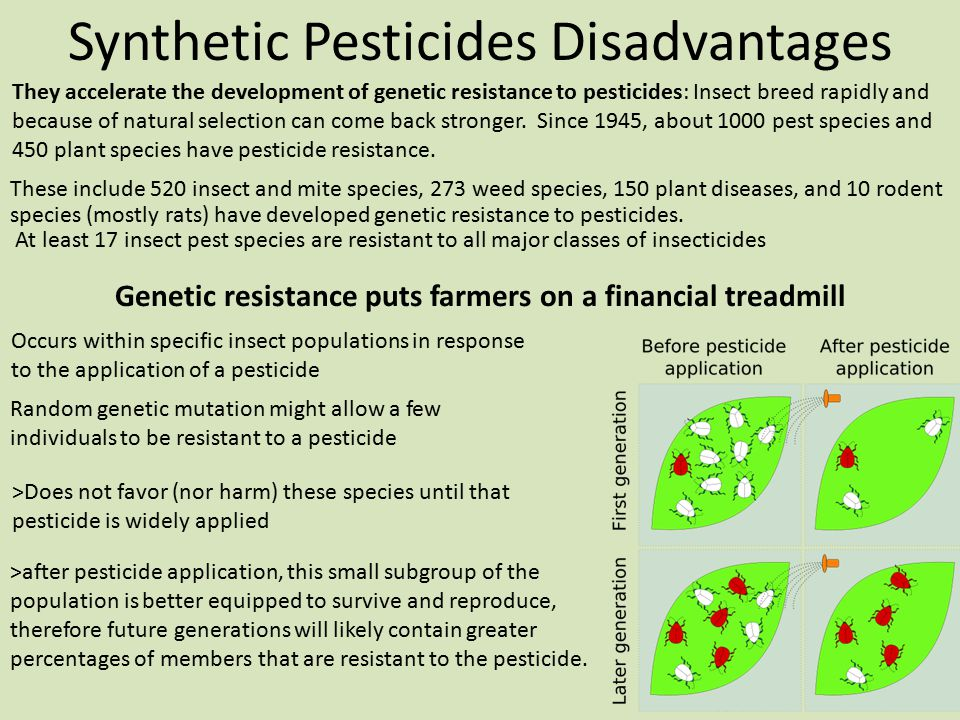 Synthetic Pesticides Disadvantages