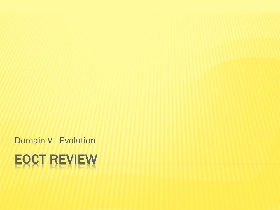 Domain V - Evolution EOCT Review