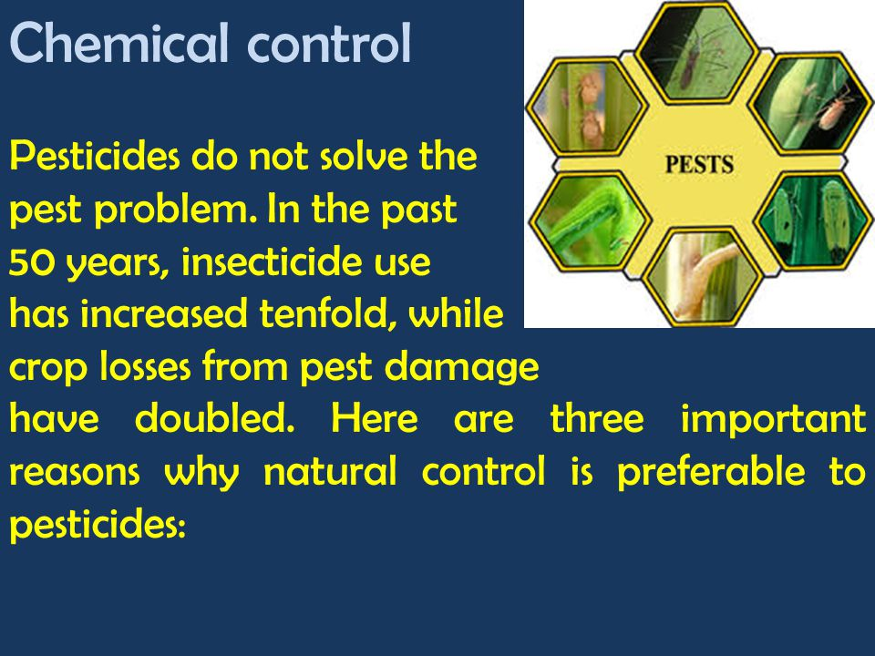 Chemical control Pesticides do not solve the pest problem. In the past