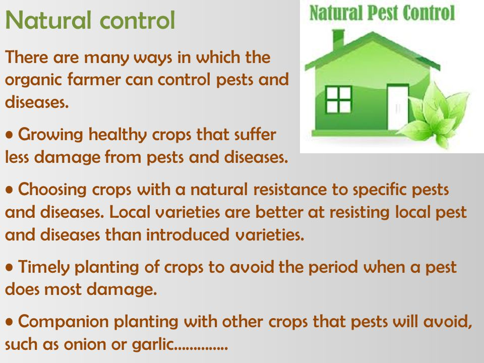 Natural control There are many ways in which the