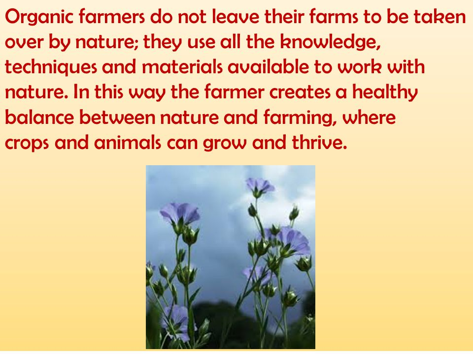 Organic farmers do not leave their farms to be taken over by nature; they use all the knowledge, techniques and materials available to work with nature. In this way the farmer creates a healthy balance between nature and farming, where
