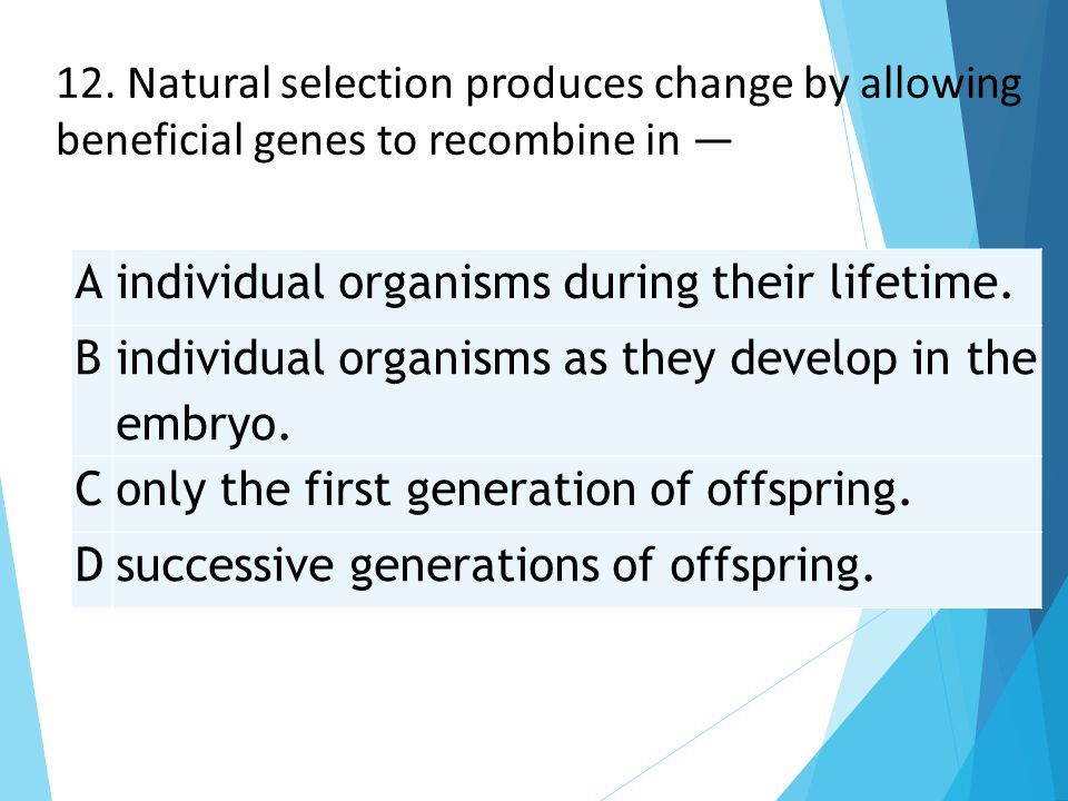 12. Natural selection produces change by allowing beneficial genes to recombine in —