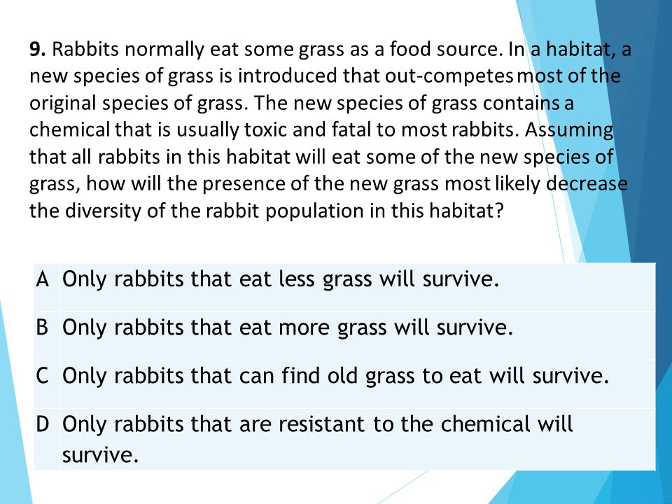 9. Rabbits normally eat some grass as a food source