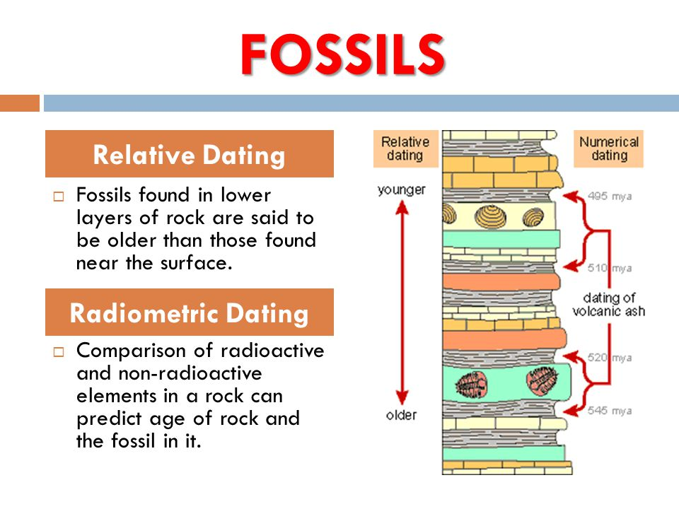 Explain the difference between relative dating and radiometric dating