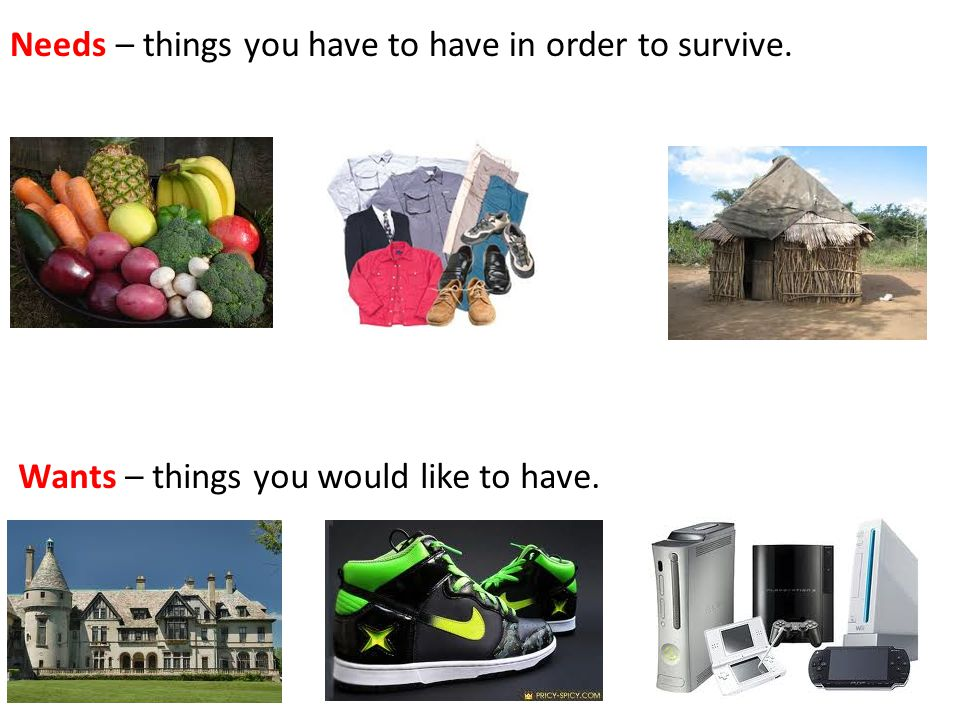 Needs – things you have to have in order to survive.