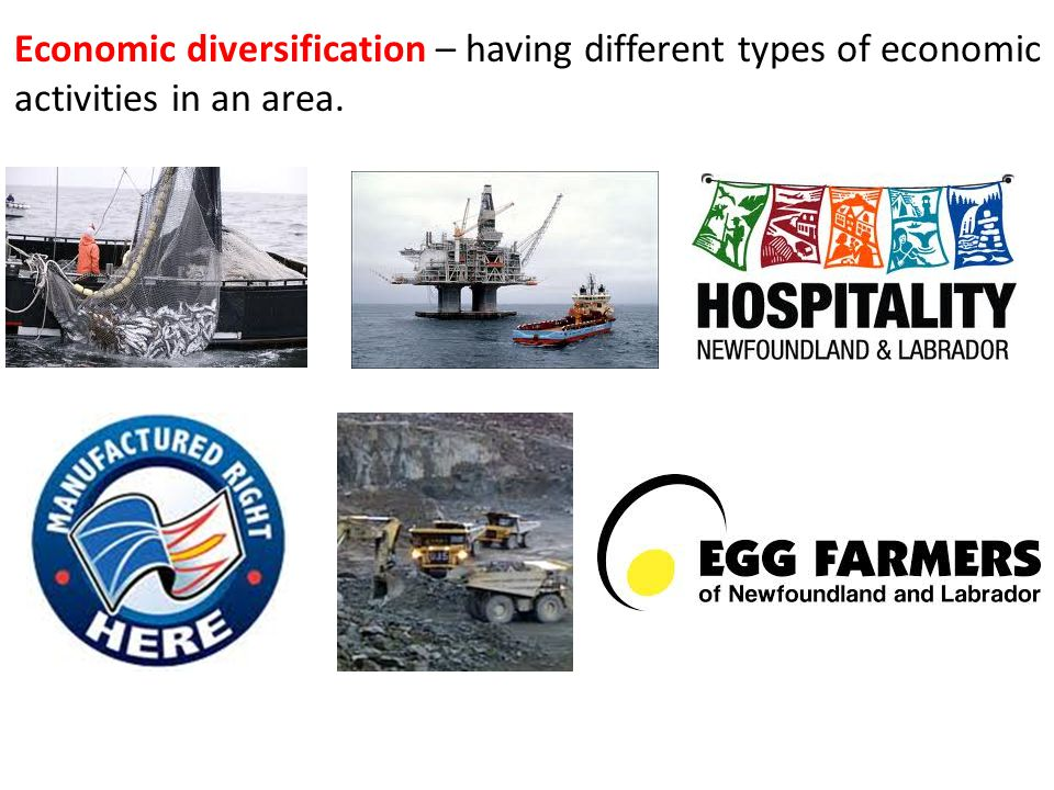 Economic diversification – having different types of economic activities in an area.