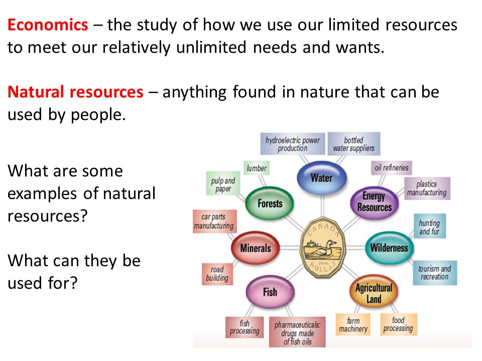 Introduction to Natural Resource Economics. Types of Natural Resources. Natural resource economics focuses on the supply, demand, and allocation of the Earth's natural resources. Learning Objectives. An example of natural resource protection is the Clean Air Act. The act was designed in to control air pollution on a national level.