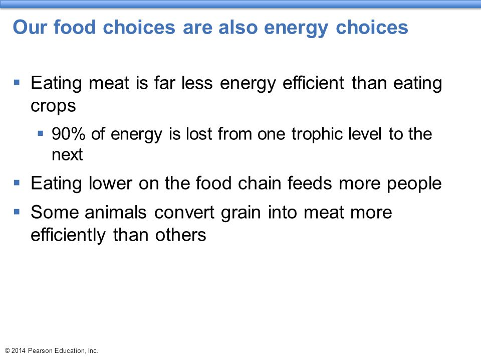 Our food choices are also energy choices