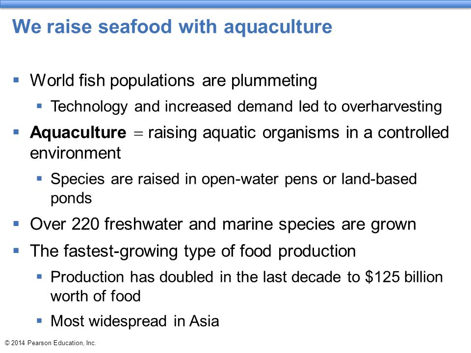 We raise seafood with aquaculture