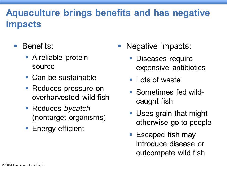 Aquaculture brings benefits and has negative impacts