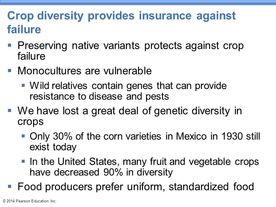 Crop diversity provides insurance against failure