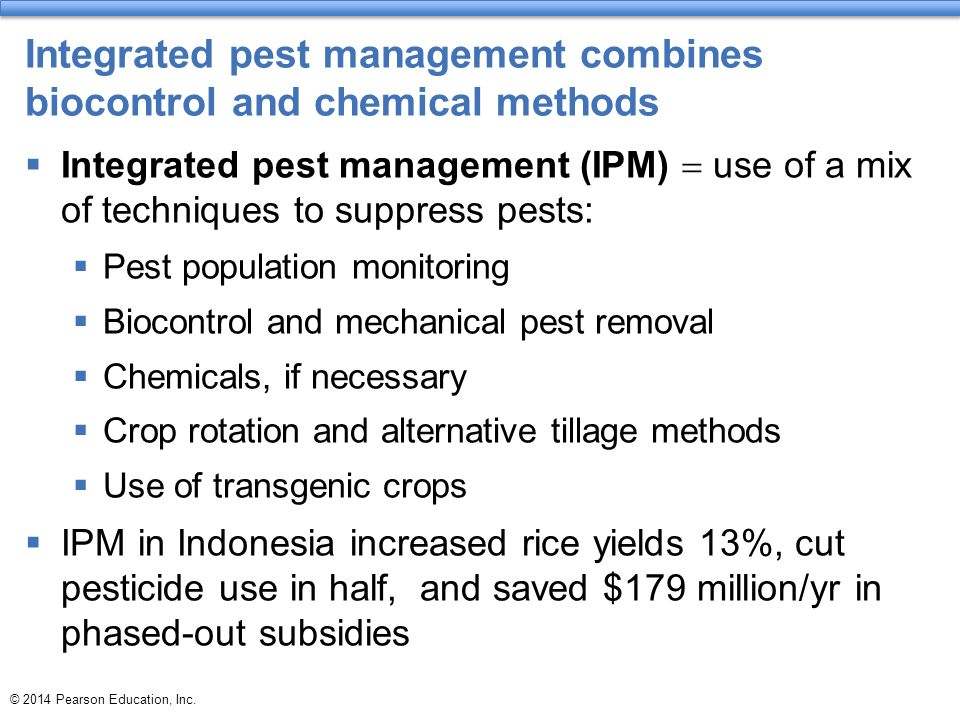 Integrated pest management combines biocontrol and chemical methods