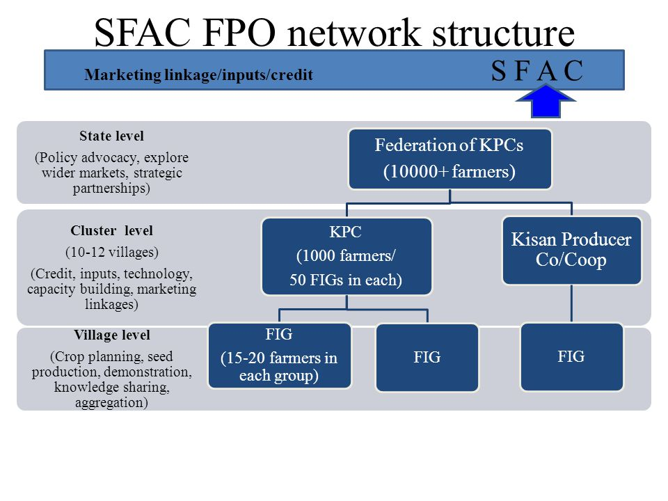 SFAC FPO network structure