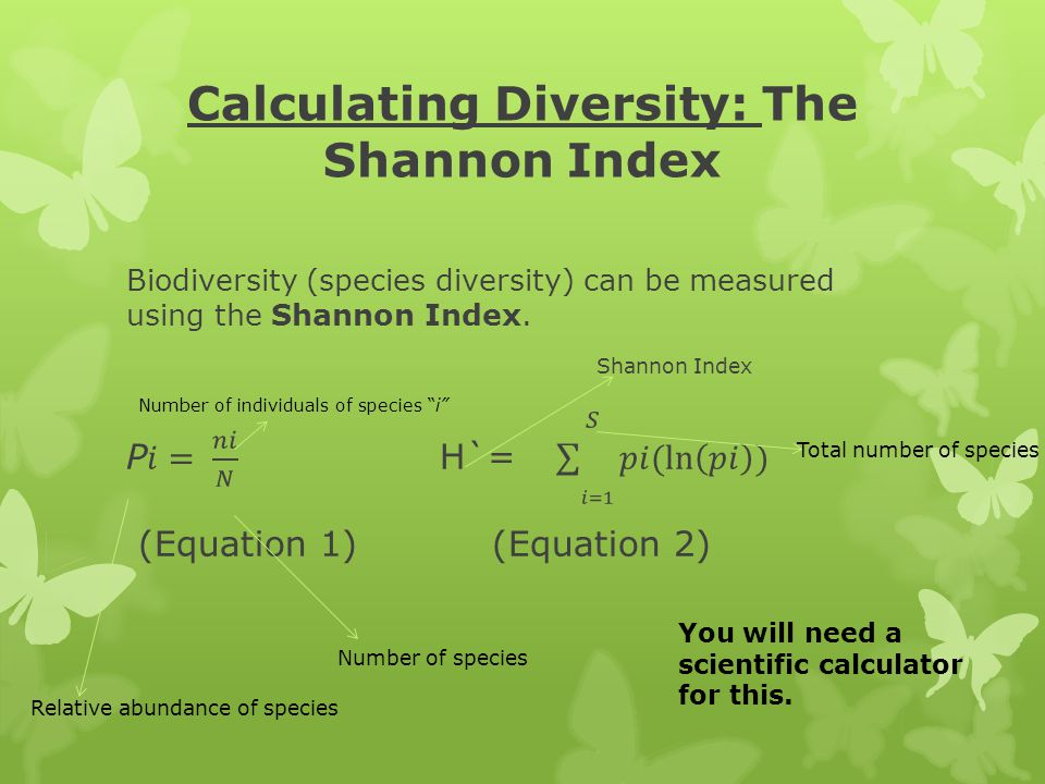 Calculating Diversity: The Shannon Index