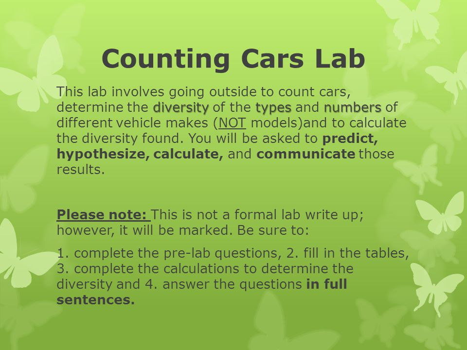 Counting Cars Lab