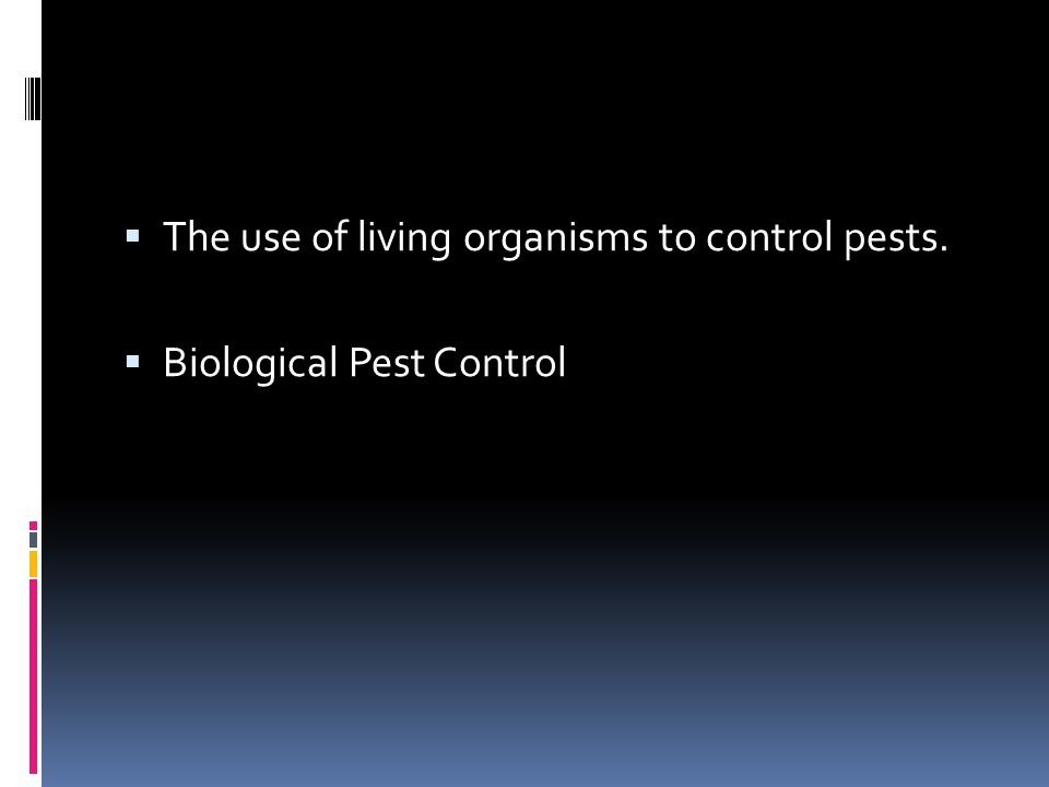 The use of living organisms to control pests.