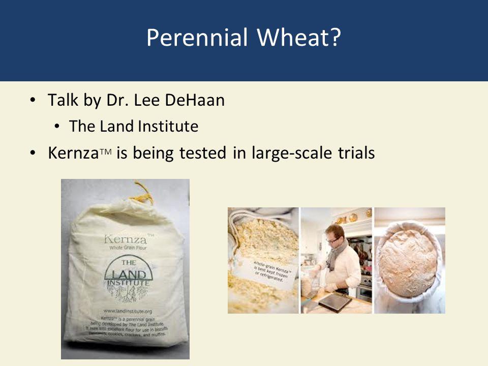 Perennial Wheat Talk by Dr. Lee DeHaan