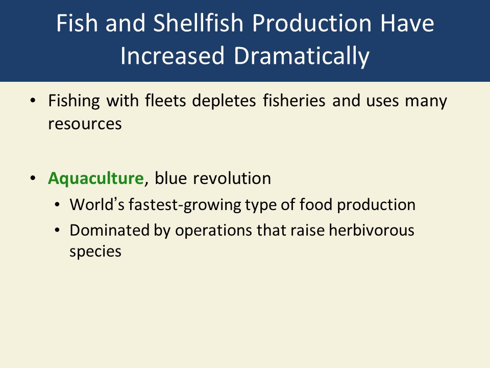 Fish and Shellfish Production Have Increased Dramatically