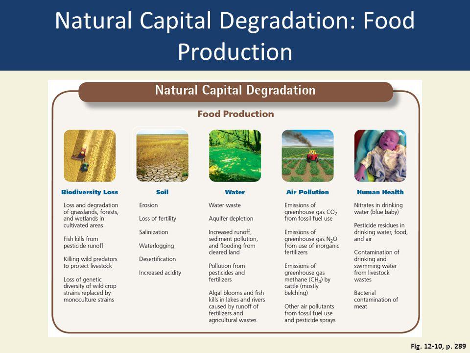 Natural Capital Degradation: Food Production