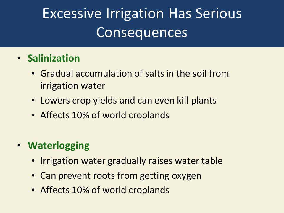 Excessive Irrigation Has Serious Consequences
