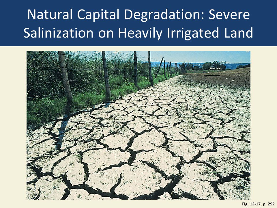 Natural Capital Degradation: Severe Salinization on Heavily Irrigated Land