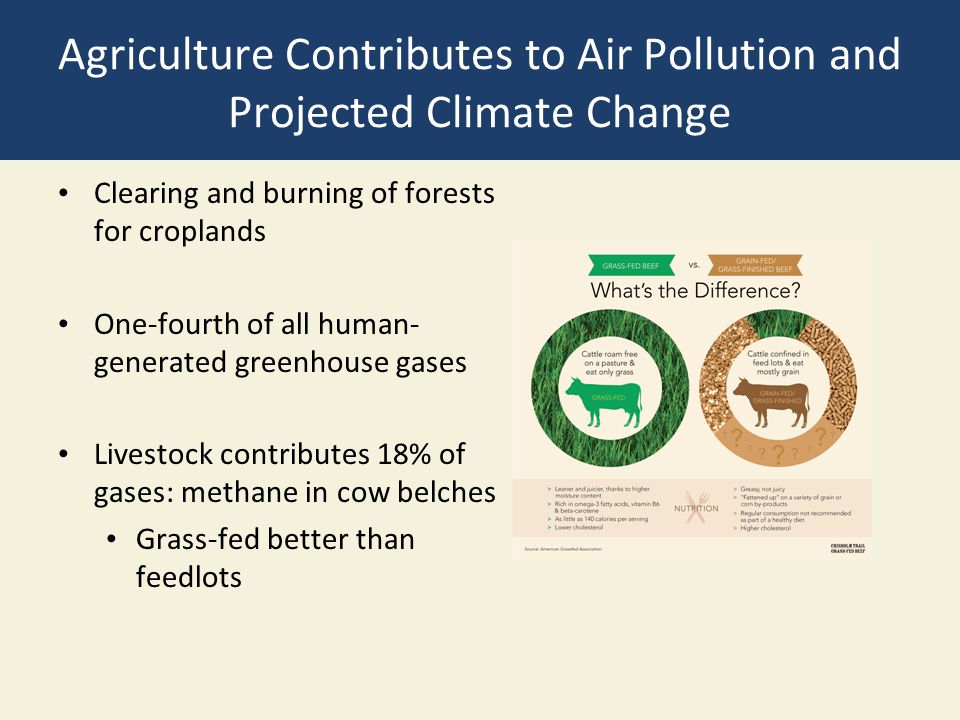 Agriculture Contributes to Air Pollution and Projected Climate Change