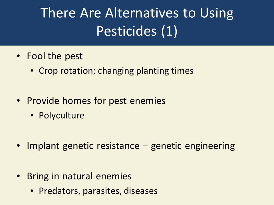 There Are Alternatives to Using Pesticides (1)