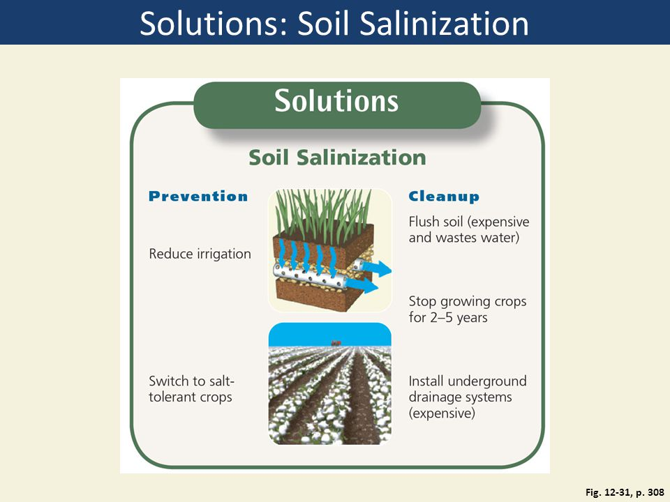 Solutions: Soil Salinization