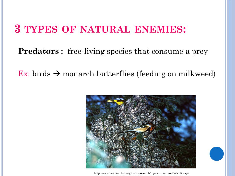 3 types of natural enemies:
