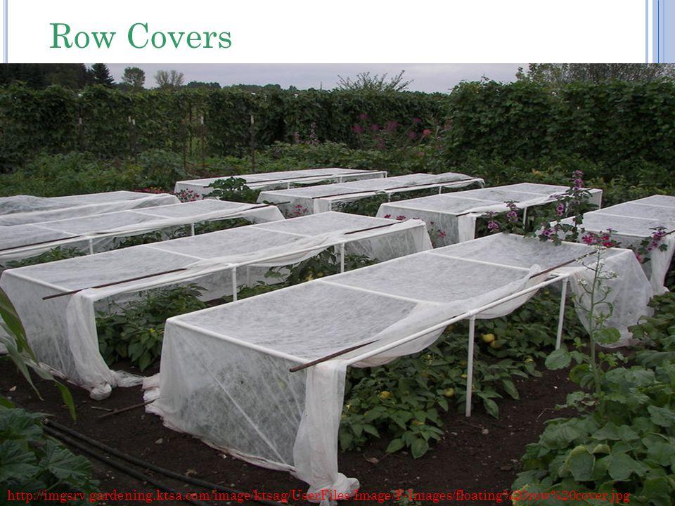 Row Covers http://imgsrv.gardening.ktsa.com/image/ktsag/UserFiles/Image/F-Images/floating%20row%20cover.jpg.