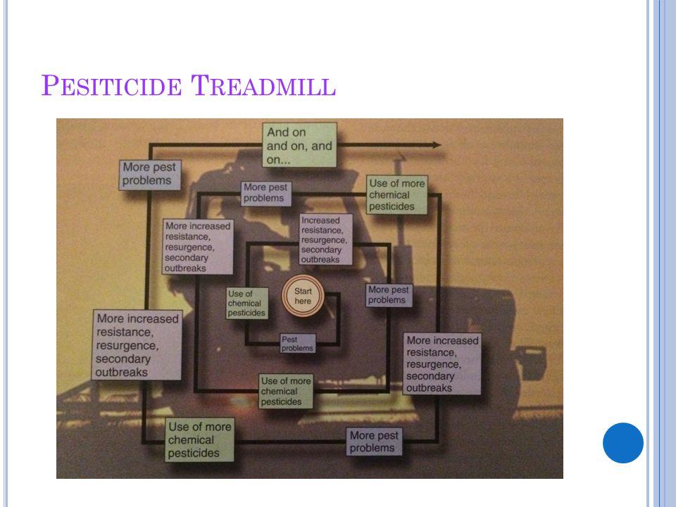 Pesiticide Treadmill
