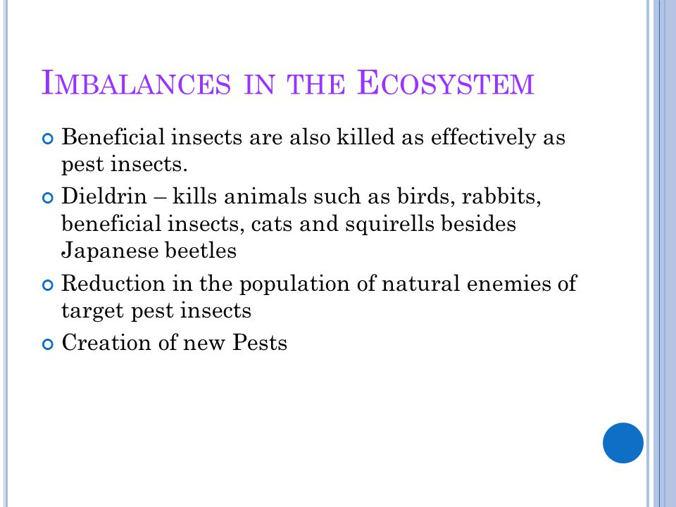 Imbalances in the Ecosystem