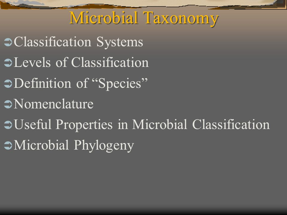 Microbial Taxonomy Classification Systems Levels of Classification