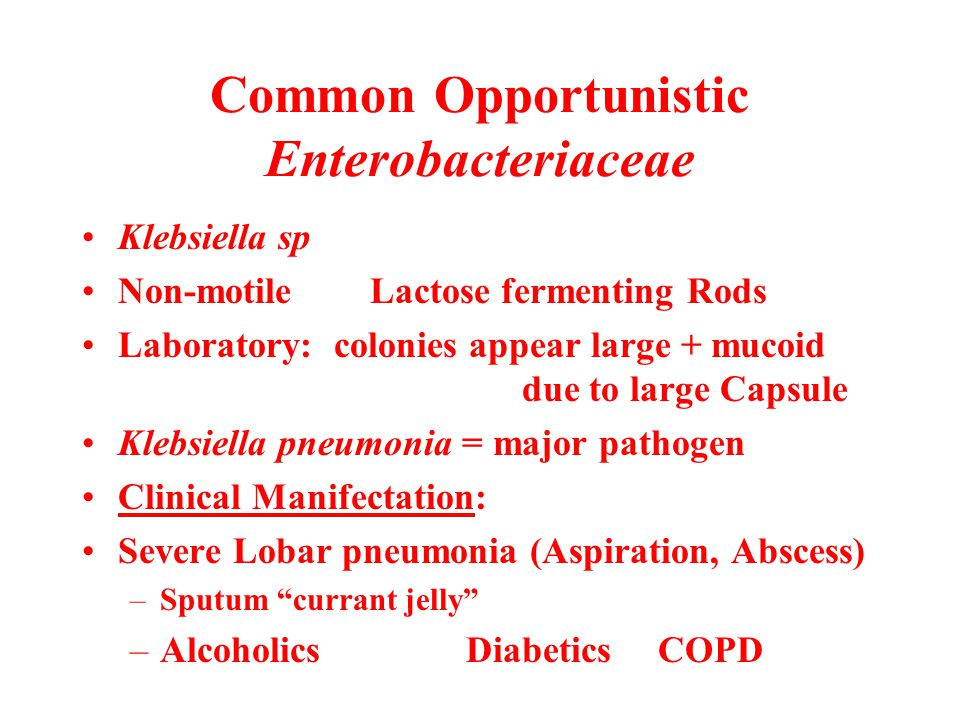 Common Opportunistic Enterobacteriaceae