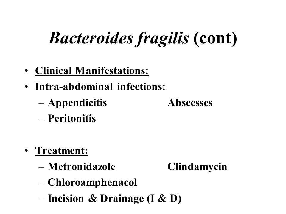 Bacteroides fragilis (cont)
