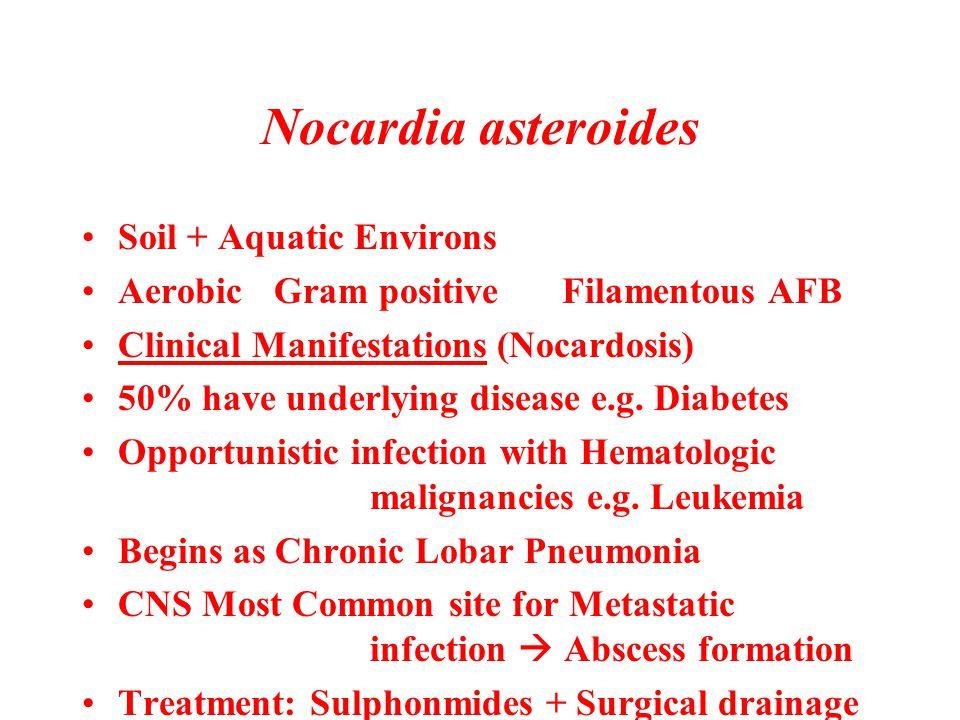 Nocardia asteroides Soil + Aquatic Environs