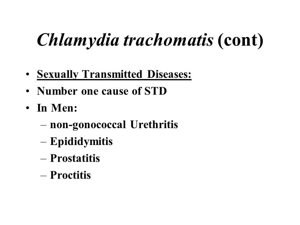 Chlamydia trachomatis (cont)