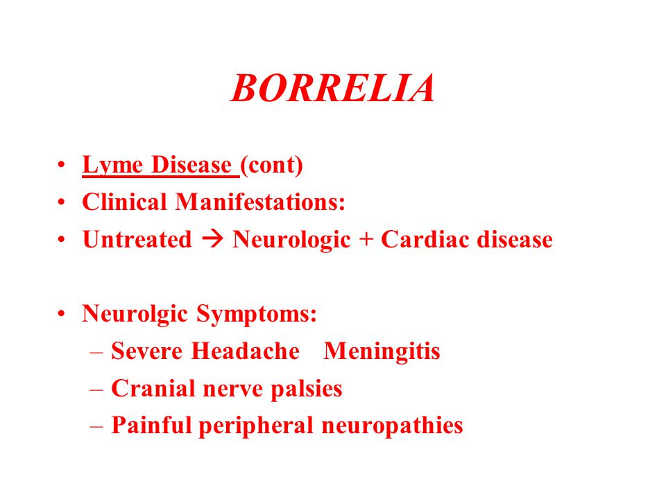 BORRELIA Lyme Disease (cont) Clinical Manifestations: