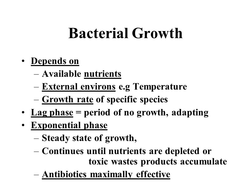 Bacterial Growth Depends on Available nutrients