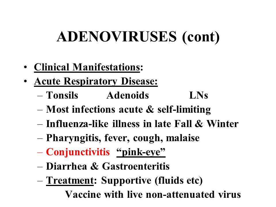 ADENOVIRUSES (cont) Clinical Manifestations: