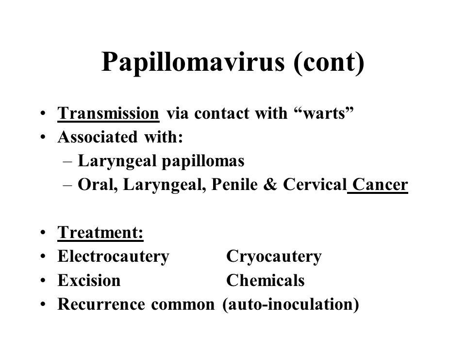Papillomavirus (cont)