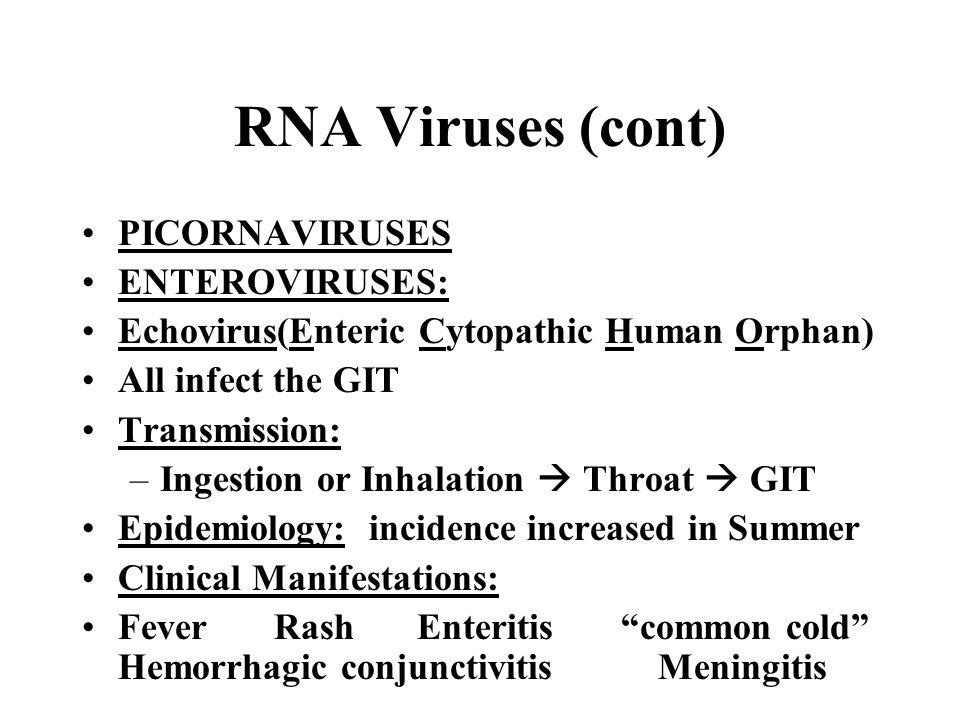 RNA Viruses (cont) PICORNAVIRUSES ENTEROVIRUSES: