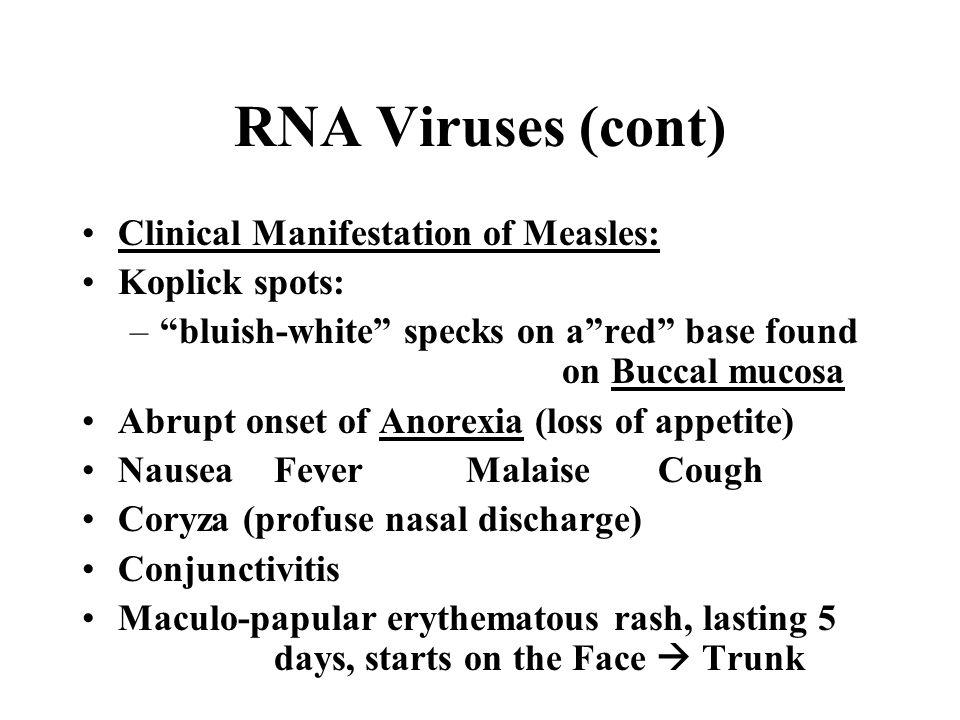 RNA Viruses (cont) Clinical Manifestation of Measles: Koplick spots:
