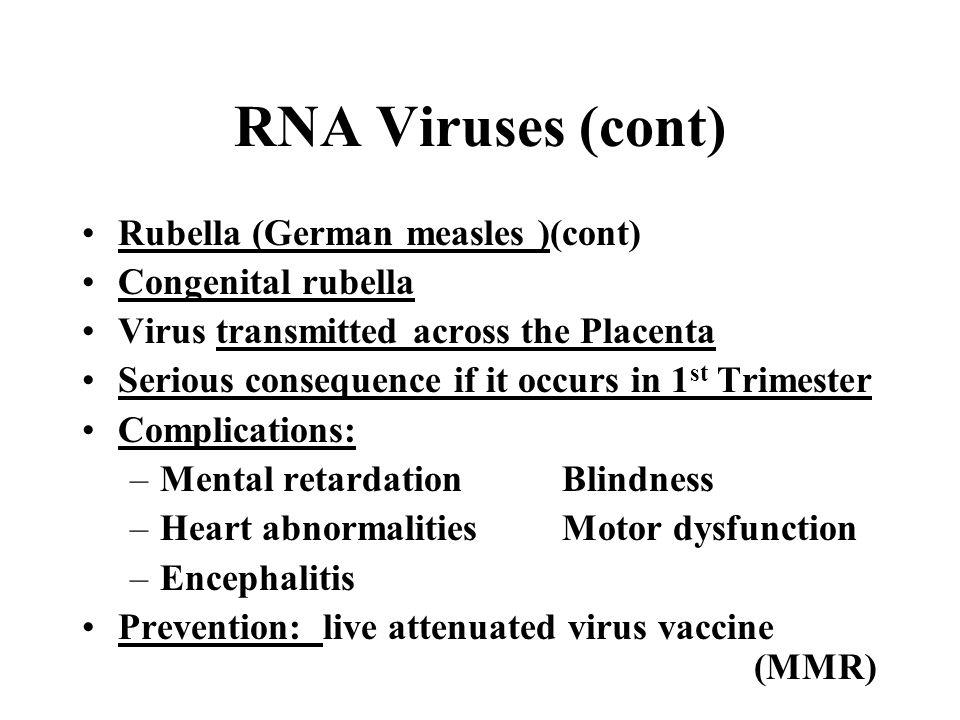 RNA Viruses (cont) Rubella (German measles )(cont) Congenital rubella