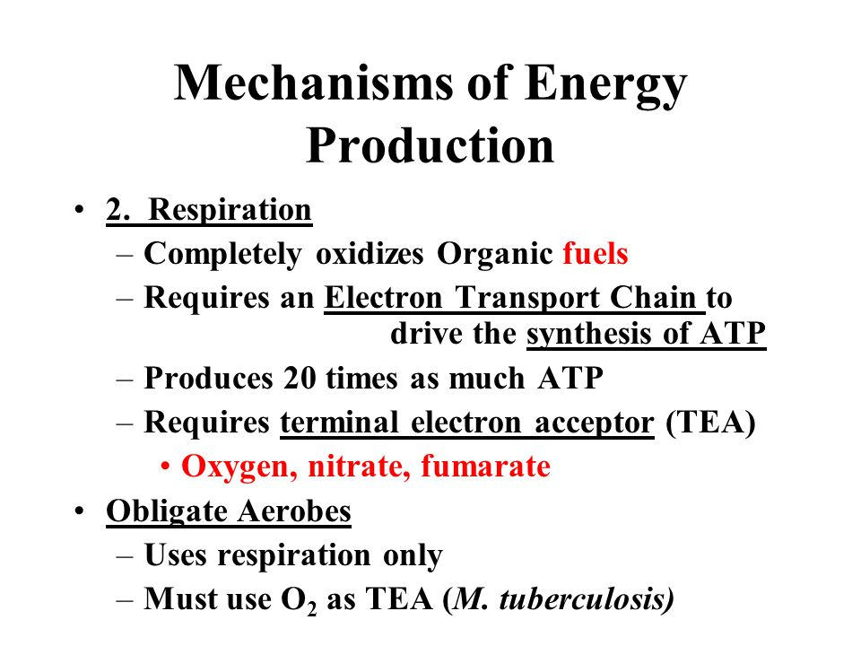 Mechanisms of Energy Production