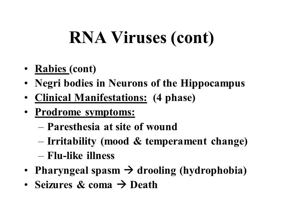 RNA Viruses (cont) Rabies (cont)